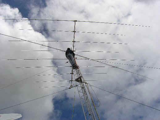 Force 12 Flagpole Antenna Manual