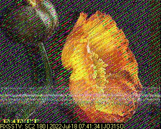 DC9DD image#7