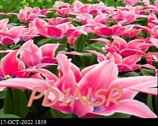 History #17 de DG8YFM