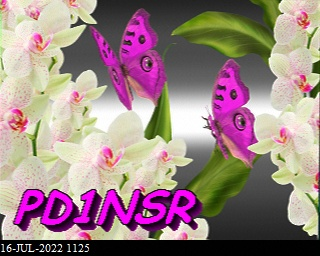 History #19 de DG8YFM
