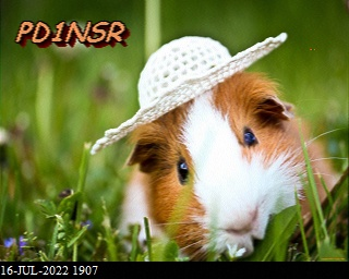 History #20 de DG8YFM