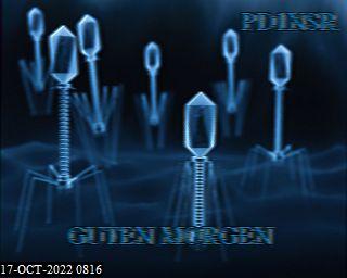 History #22 de DG8YFM