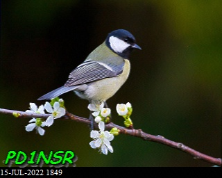 5th previous previous RX de DG8YFM