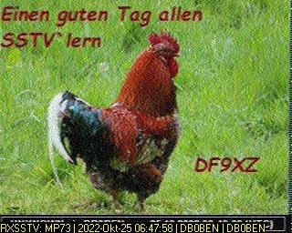 History #7 de DG8YFM