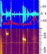 "screenshot ""amplitude bar"" alongside spectrogram"