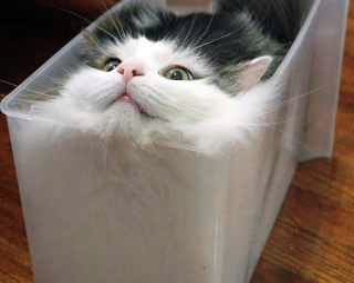 History #13 de DL9DAC
