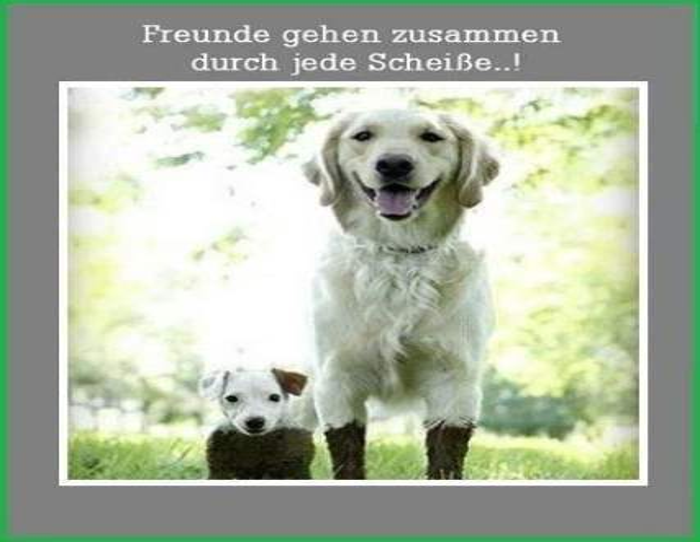 History #18 de DL9DAC