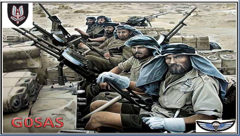 G0sas Gx0sas The Uk Special Forces Commemorative
