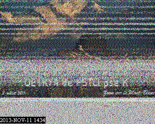 G1JCW image#2