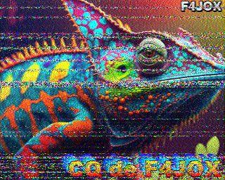 MØPWX image#3