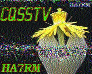 MØPWX image#