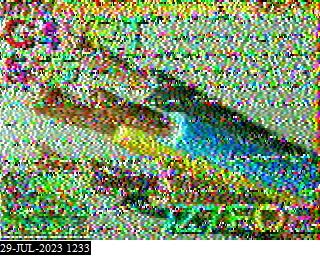 M3ARB </b><i>RX</i><b> image#2