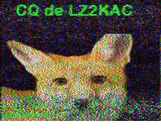 ON5LG image#30