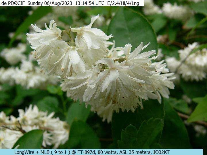 22-Sep-2021 19:08:49 UTC de PAØØ41SWL