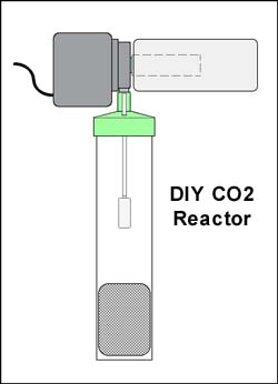 DIY CO2 System for Planted Aquarium