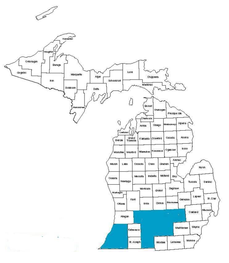 Michigan Cabinet Counties Award