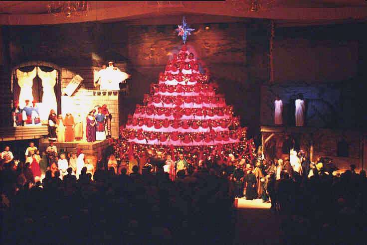 1998 living christmas tree and set - Living Christmas Tree