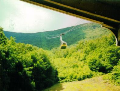 Tram car entering Base Lodge