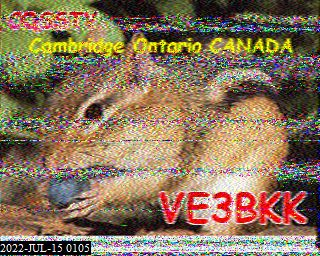 WF3F image#18
