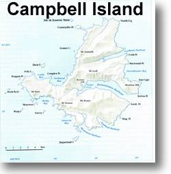 how to get to campbell island